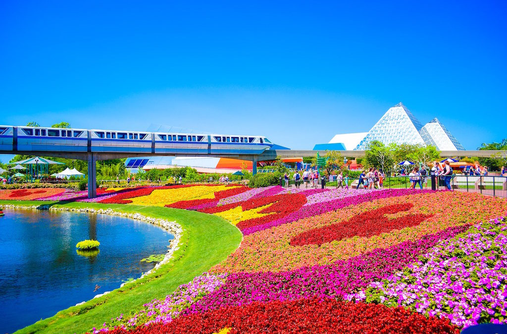 Going to Orlando? Check Out These Attractions